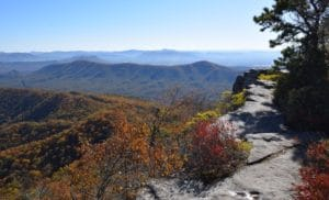 View of trees and mountains from McAfees Knob Virginia