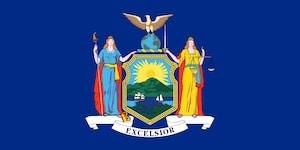 New York Flag image