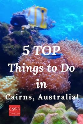 5 Things to Do in Cairns Australia