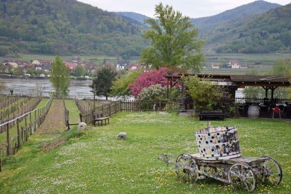 Durstein vineyard on Danube Austria