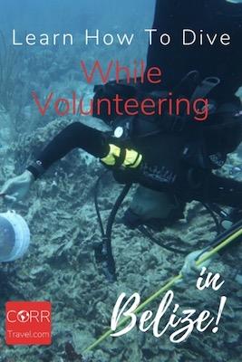 Marine Conservation Volunteer Belize Over 40