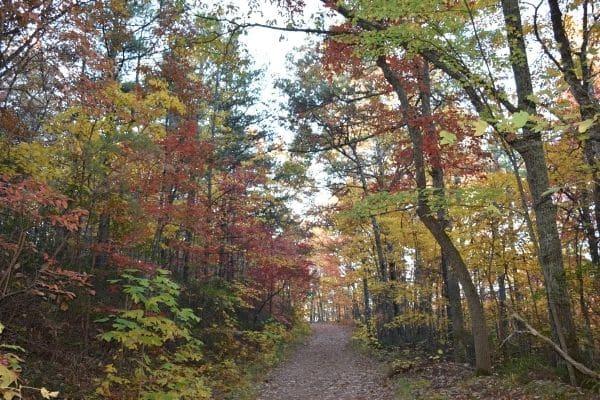 McAfees Knob Virginia Appalachian trail