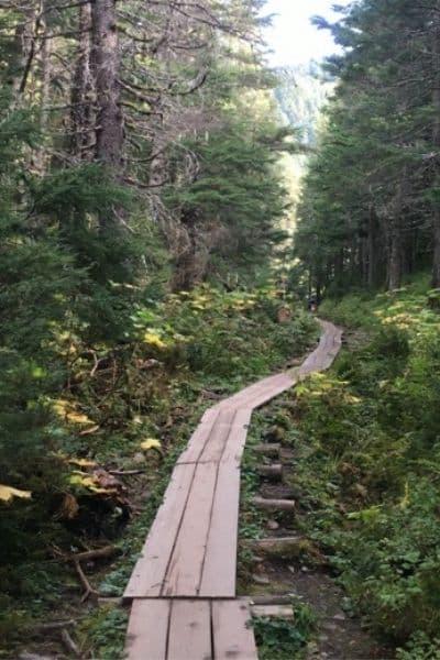 Winner Creek Trail Girdwood Alaska hiking