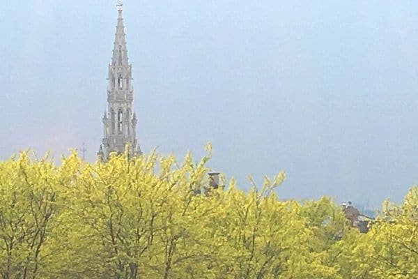 Brussels City Hall over the trees