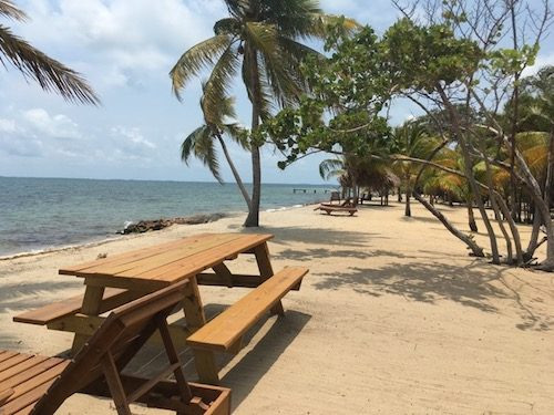 Placencia beach front and picnic benches