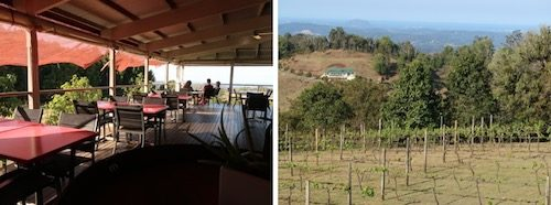 Flame Hill tasting room and vineyard Australia